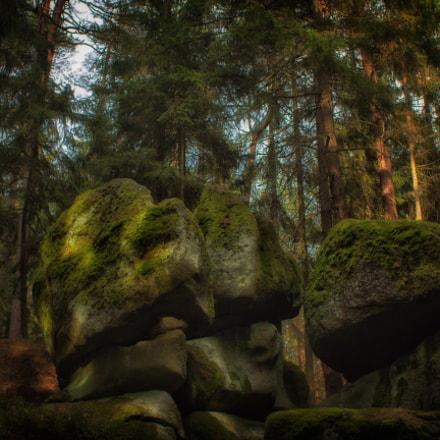 Deep In The Woods | Geyerstein Part 2