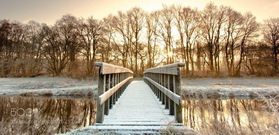 Photograph Untrodden bridge by Saskia Jans on 500px