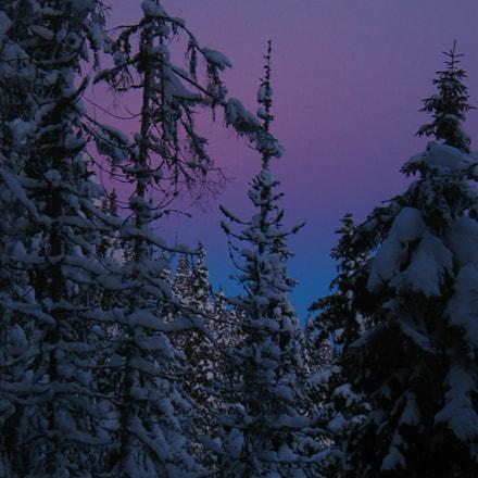 Purple sunrise, Canon POWERSHOT G3