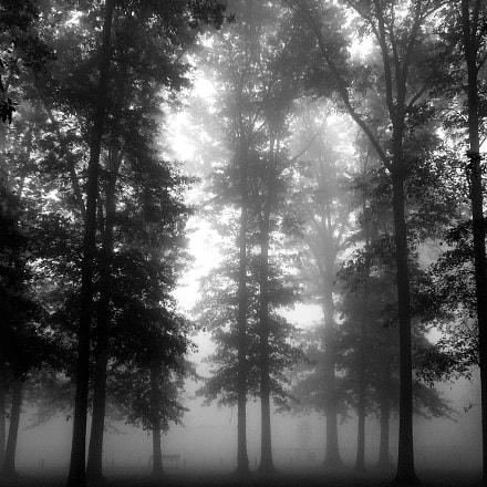 Foggy Sunrise, Panasonic DMC-FX07