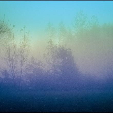 Magical Morning, Panasonic DMC-FX07