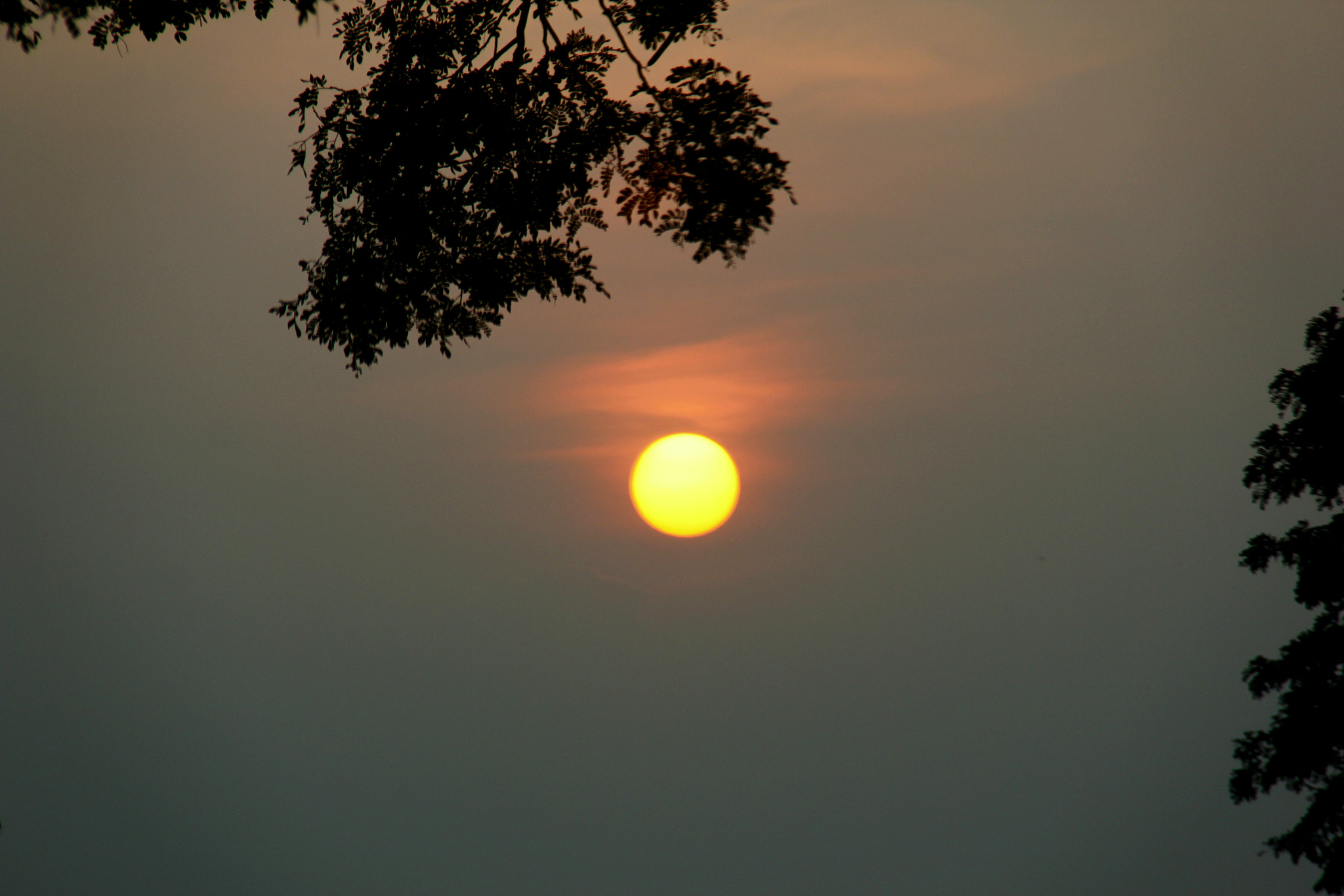 Photograph simple sunset.. by Rajkiran Ghanta on 500px