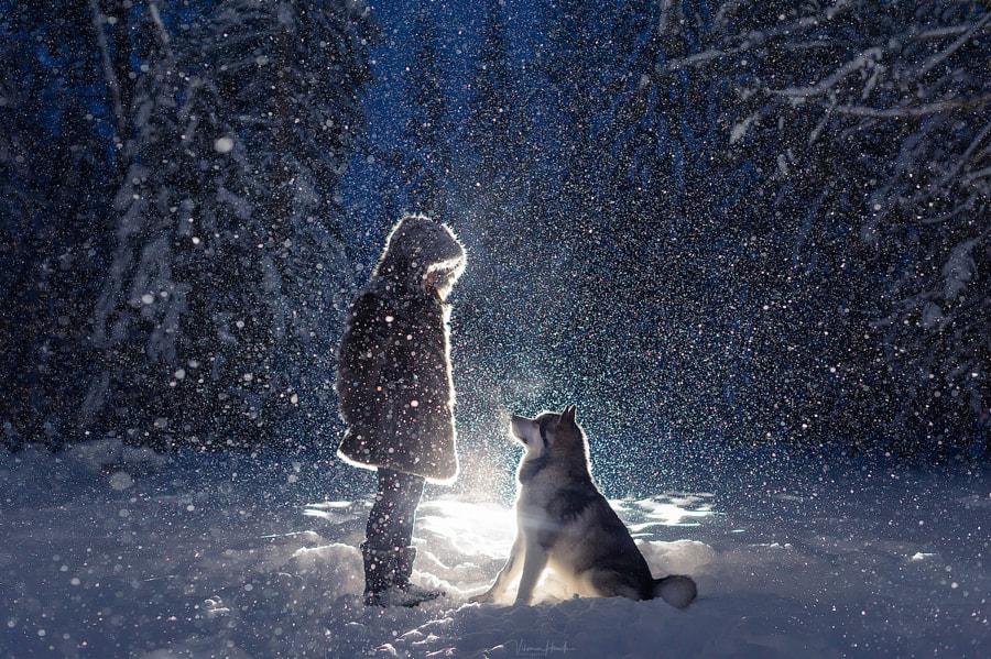 let it snow, автор — Viktoria Haack на 500px.com