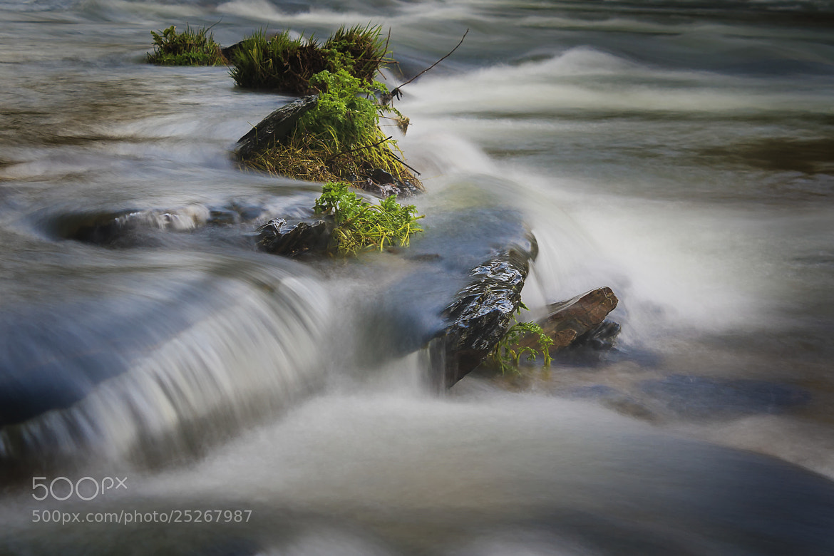 Photograph A river flows by Rui Ferreira on 500px