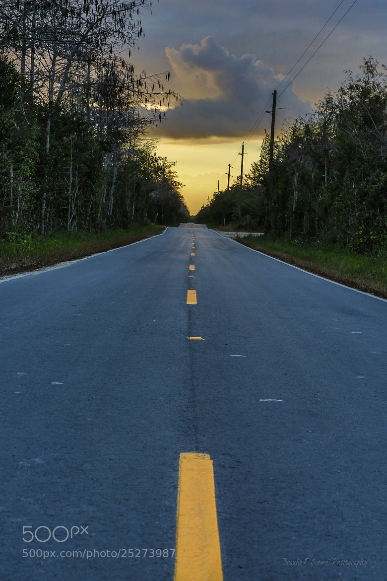 Photograph Endless Road by Braulio Cosme on 500px