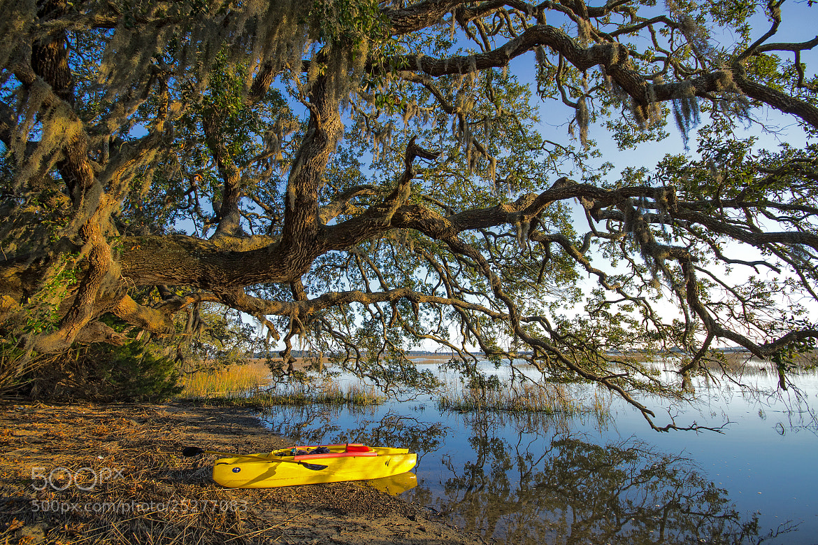 Photograph Kayak Landing by Andrew Smith on 500px