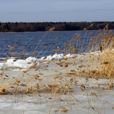 Река Нева освободилась от льда.., Sony NEX-5R, Sony E 18-55mm F3.5-5.6 OSS