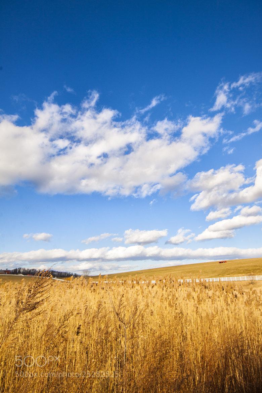 Photograph UCONN Field by Samir Mohanty on 500px