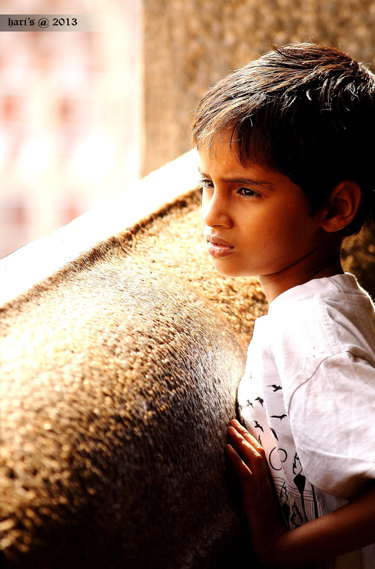 Photograph ~~waiting~~ by Hari  Prasad on 500px