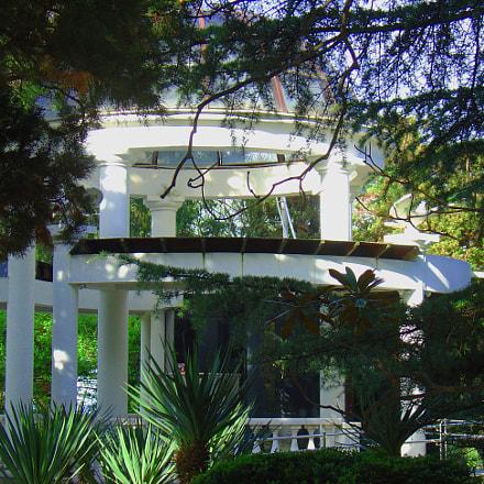 Pavilion, Sony DSC-V1