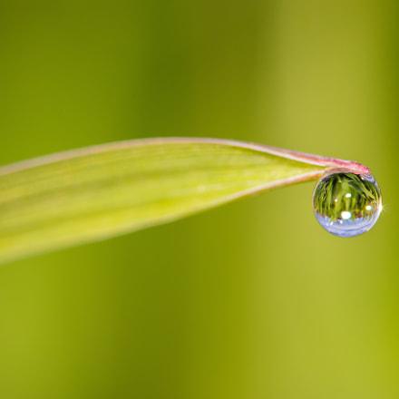 Water drop 6