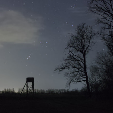 Hunter story 2., Canon EOS 1100D, Sigma 17-70mm f/2.8-4.5 DC Macro