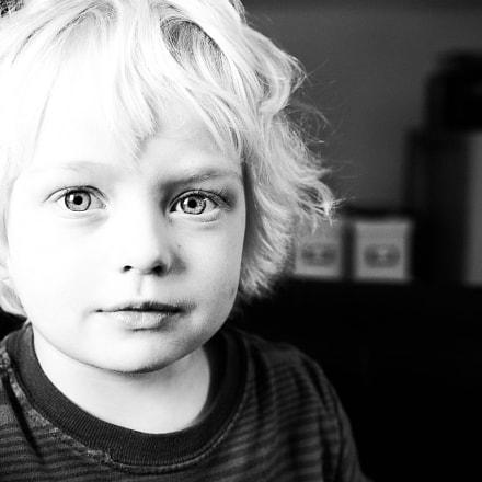 Sebi, Nikon D800E