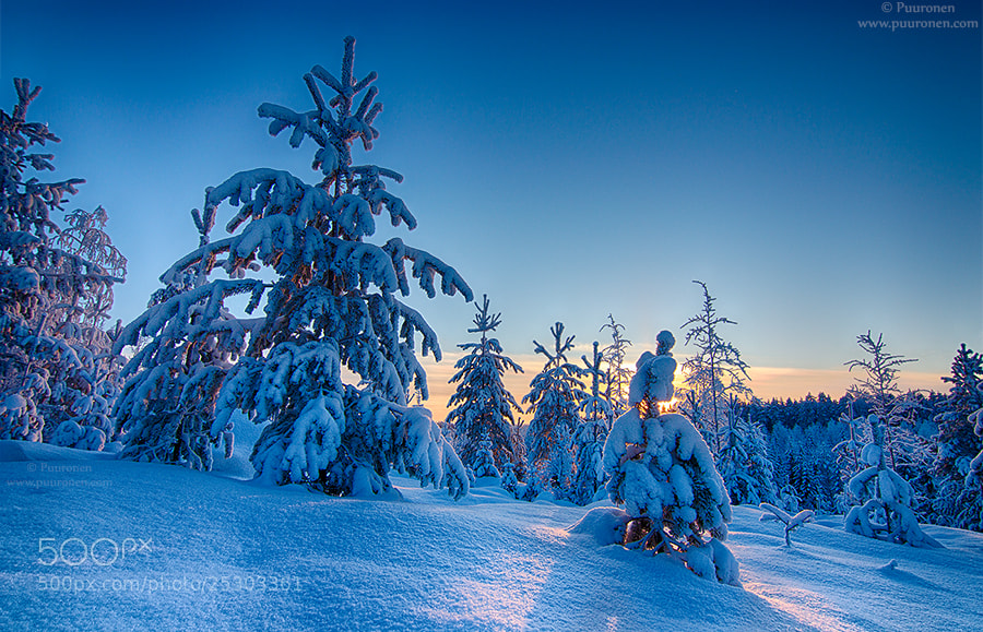 Photograph January in Finland by Samu Puuronen on 500px