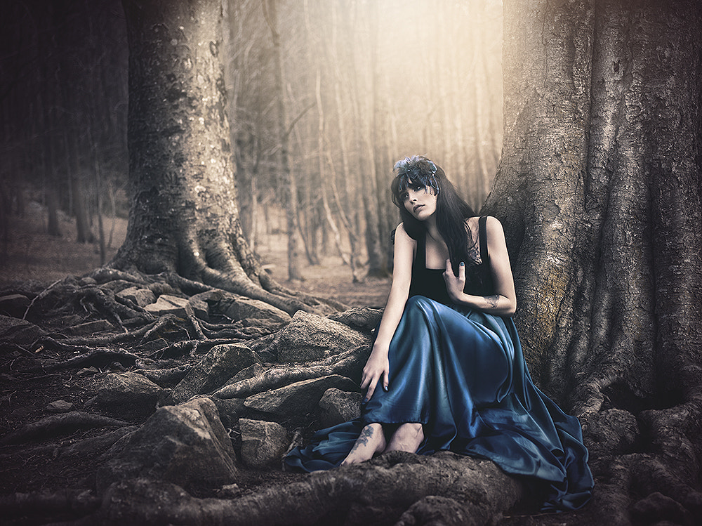Photograph Into the woods by Rebeca  Saray on 500px