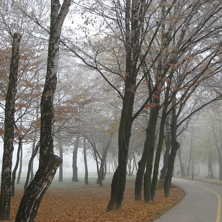 Autumn in the Park., Canon POWERSHOT A540