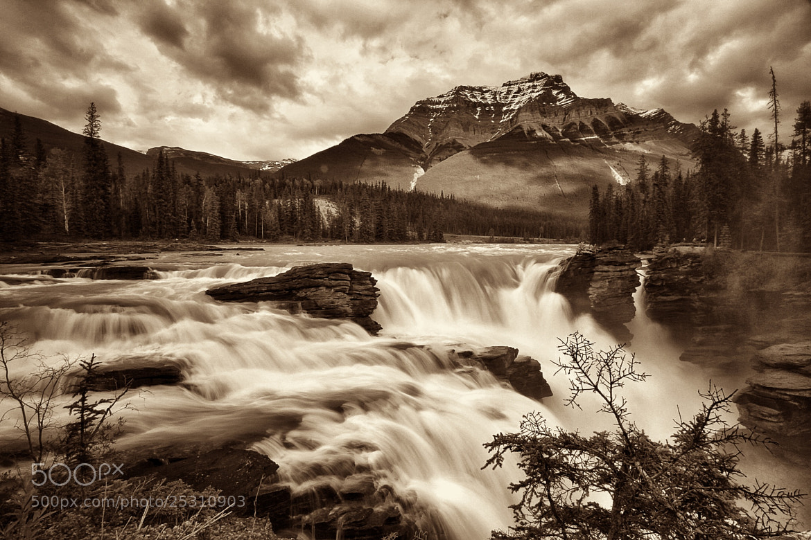 Photograph Athabasca Falls by Steve Passlow on 500px
