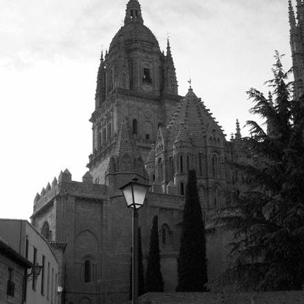 Salamanca Cathedral, Canon POWERSHOT A60