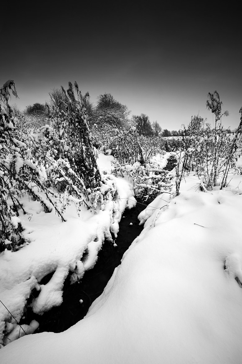 Photograph Black Winter Stream BW by Andy Freer on 500px