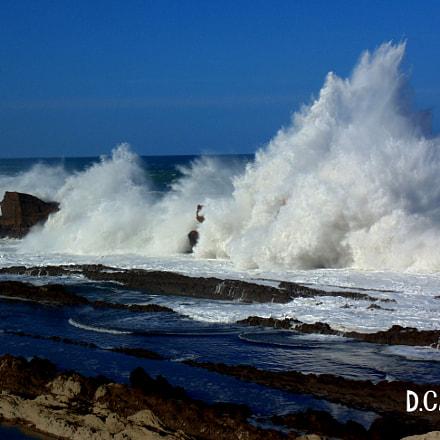 Brave Sea, Sony DSC-H200