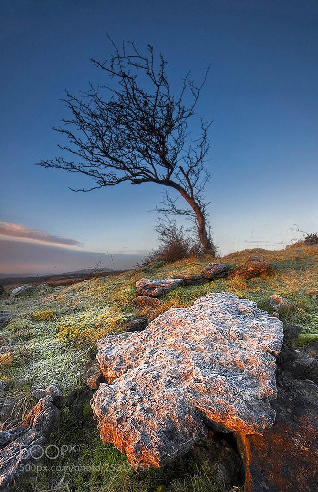 Photograph Frosty Dawn by Geoffrey Baker on 500px