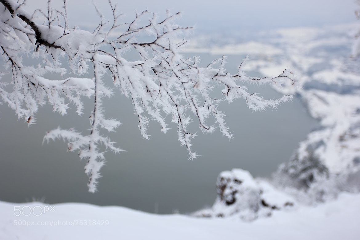 Photograph Deep freeze  by Nick Pandev on 500px