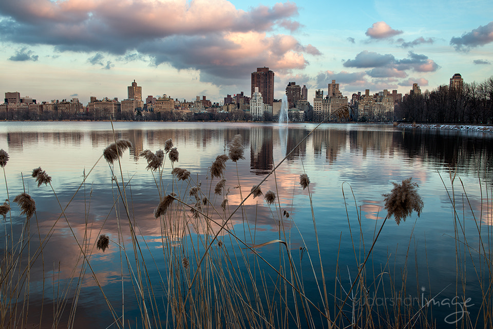 Photograph new york city from central park by Sudarshan Mondal on 500px