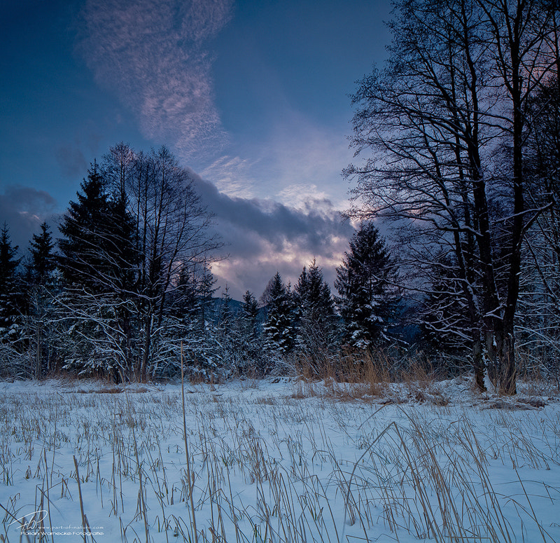 Photograph Magic winter moment by Florian Warnecke on 500px