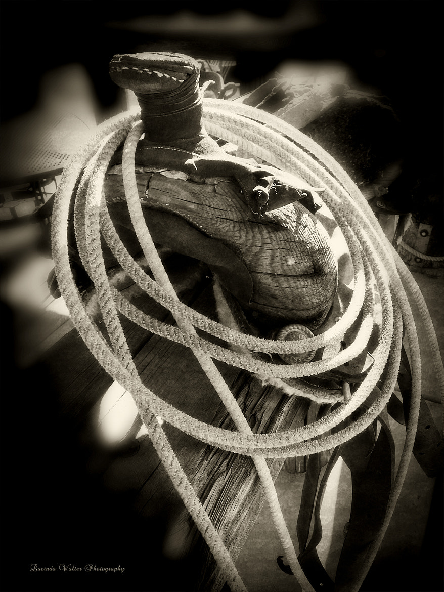 Photograph Rope ~ Saddle by Lucinda Walter on 500px