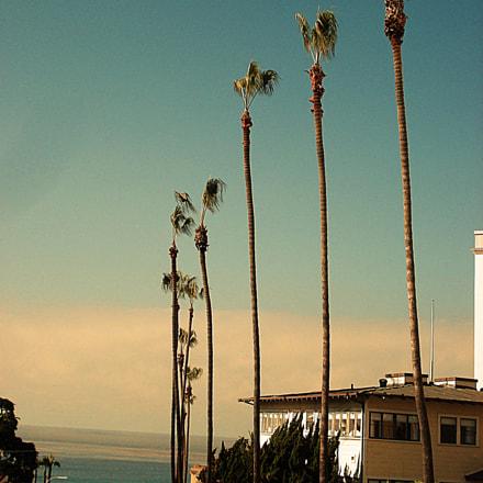 La Jolla,SD, Sony DSC-W50