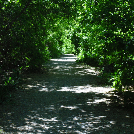 River Walk, Sony DSC-H200
