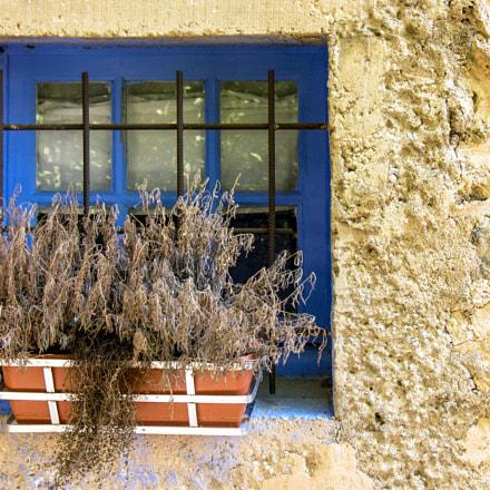 Provence, Nikon E8800
