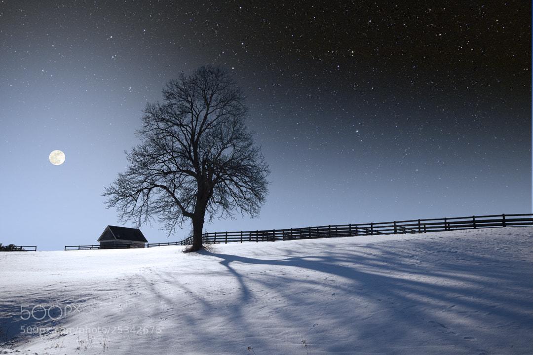 Photograph Bright Winter Moonlight by Larry Landolfi on 500px
