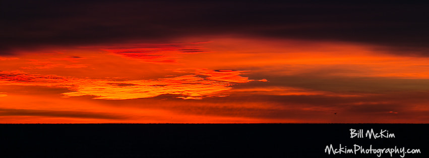 Photograph Ocean on fire by Billy Mc Kim on 500px