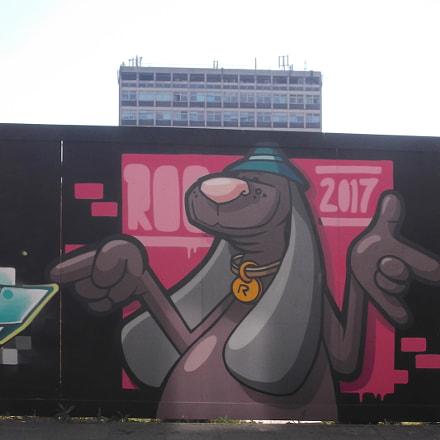 Grey Graffiti Dawg By, Fujifilm FinePix JV250