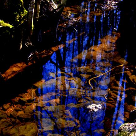 Blue Reflections, Canon POWERSHOT S90