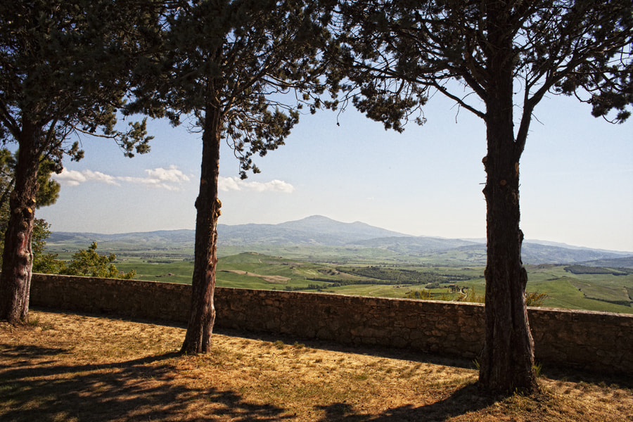 Photograph Val d'Orcia by Sanjin Jukic on 500px