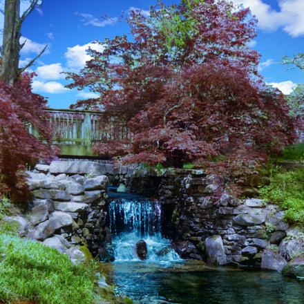 Gibbs Gardens, Ball Ground, Nikon COOLPIX S9500
