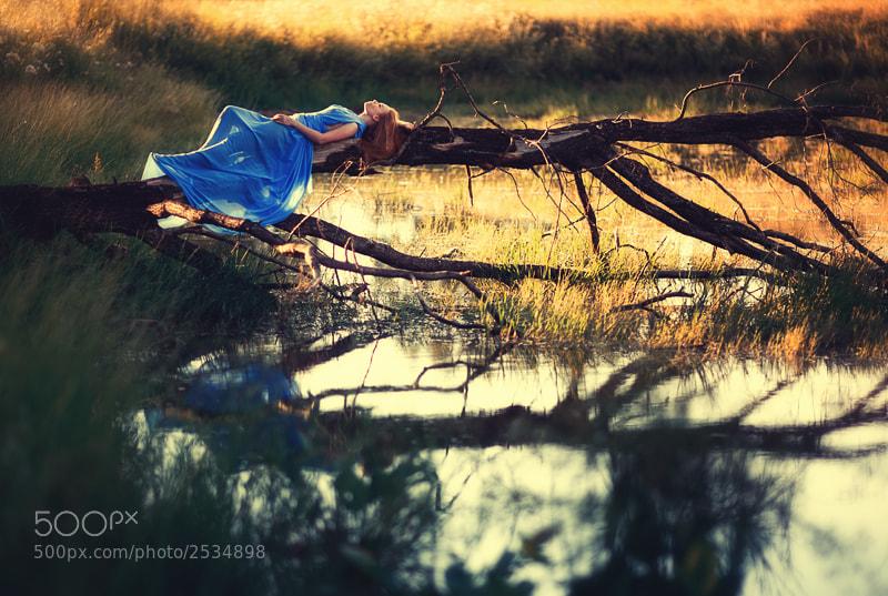 Photograph Dream by Arseniy Semyonov on 500px