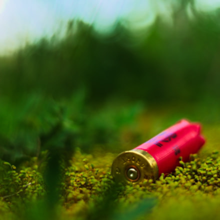 Lost bullet, Sony ILCE-7M2, Sony DT 50mm F1.8 SAM (SAL50F18)