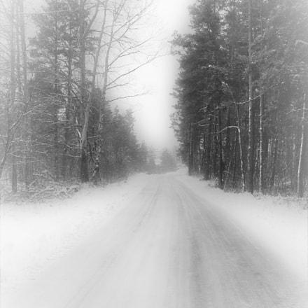 road, Fujifilm A850