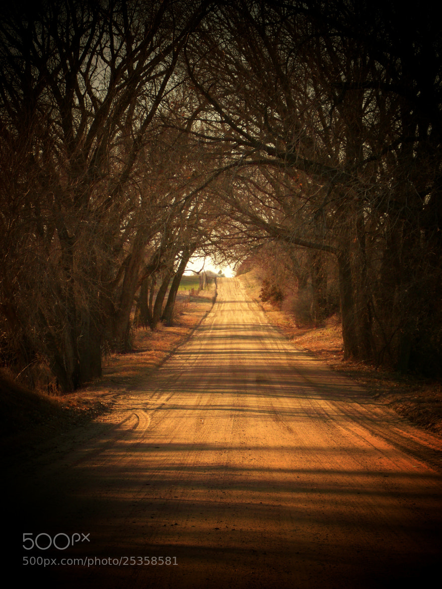 Photograph long dirt road by mindy voth on 500px