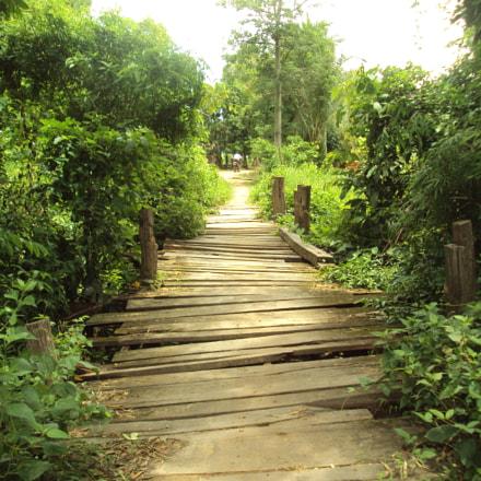Un pont,  Cambodia, Sony DSC-S980
