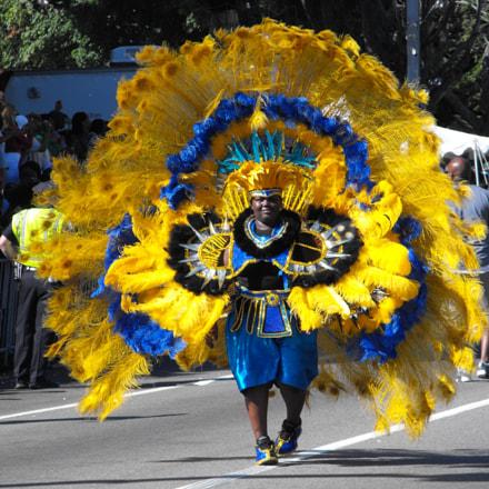 Caribbean Festival, Fujifilm FinePix S1000fd