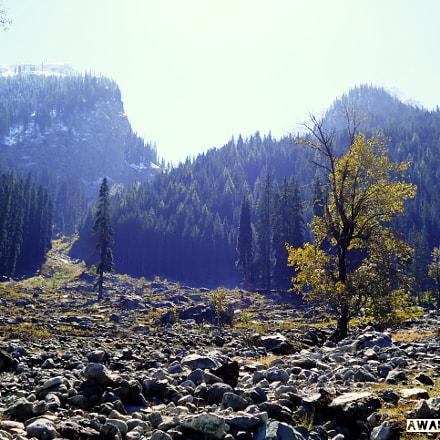 Scenery, Nikon COOLPIX L28