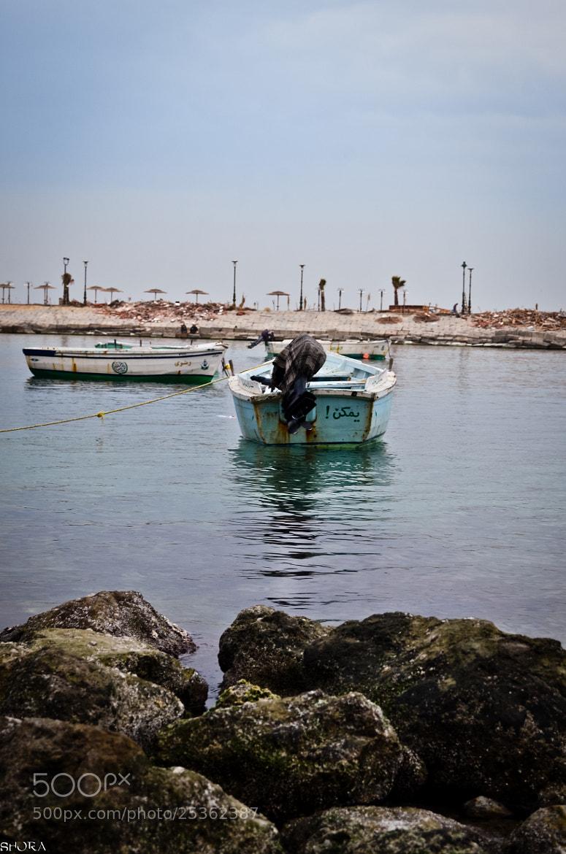 Photograph *** by Mohamed Elshora on 500px