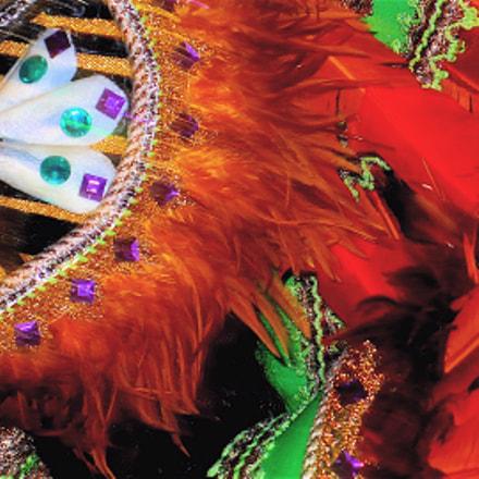 Carnaval SP 2009,hey!!, Panasonic DMC-LX2