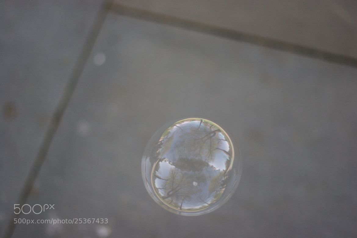 Photograph Bubble by Miles Skorpen on 500px