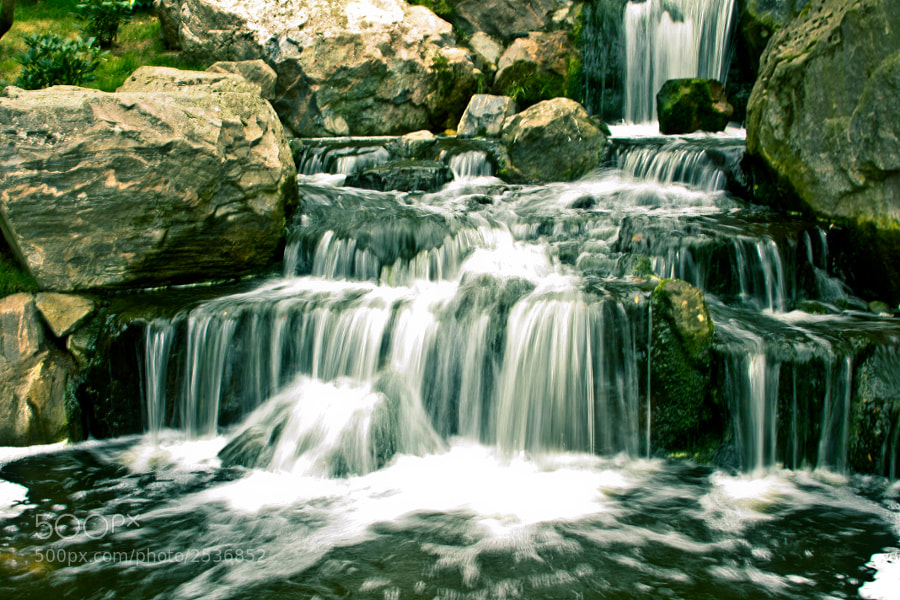 I wanted to shoot some falls like this for a looong time. I finally had the opportunity at Holland Park in London. Just wanted to capture a moment of calm and nature inside the big boiling city.