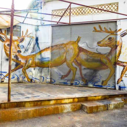 Tel Aviv Street Art, Canon POWERSHOT S100